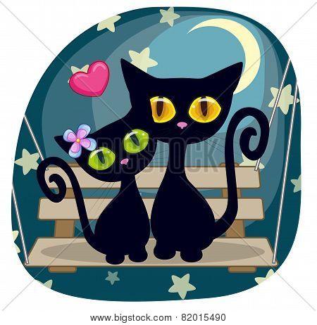 Lovers Black Kittens