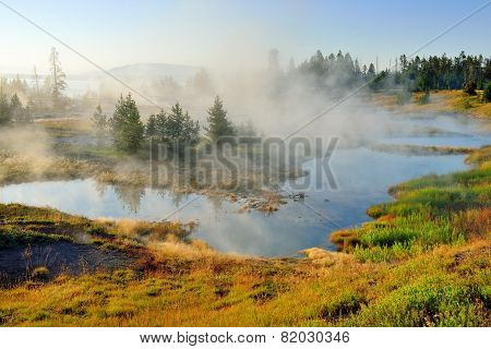 Steaming Geysers In West Thumb Area In Yellowstone National Park, Wyoming