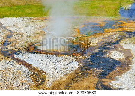 Small Steaming Geyser In Upper Geyser Basin Of Yellowstone National Park, Wyoming