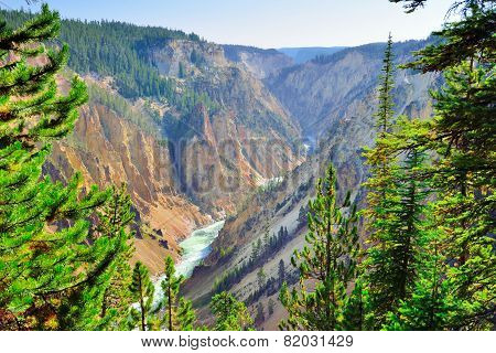 Canyon Of The Yellowstone In Wyoming During Summer View From The South Rim Overlook Point
