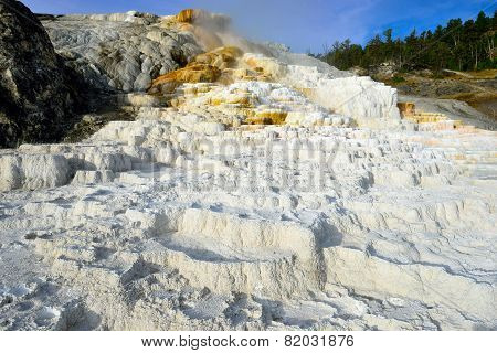 Palette Spring In Mammoth Hot Springs Area Of Yellowstone National Park, Wyoming