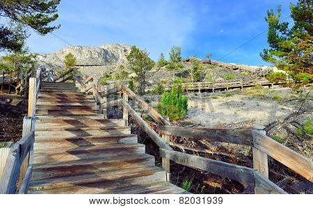 Wooden Walkway Across Minerva Terrace In Mammoth Hot Springs Area Of Yellowstone National Park, Wyom