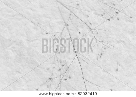 Mulberry paper with dry grass texture grey background