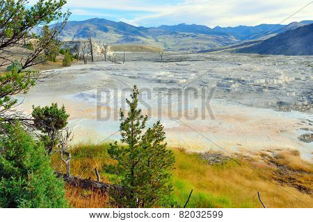 View Of The Plateau In Mammoth Hot Springs Area Of Yellowstone National Park, Wyoming