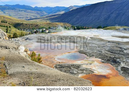 Grassy Spring In Mammoth Hot Springs Area Of Yellowstone National Park, Wyoming