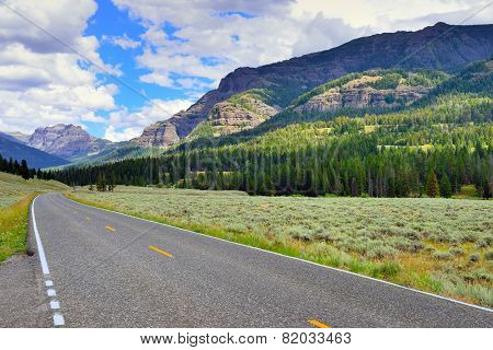 Road Through The Lamar Valley In Yellowstone National Park, Wyoming In Summer