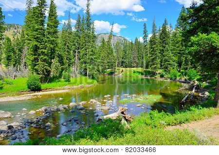Slough Creek Campground In Yellowstone National Park, Wyoming In Summer