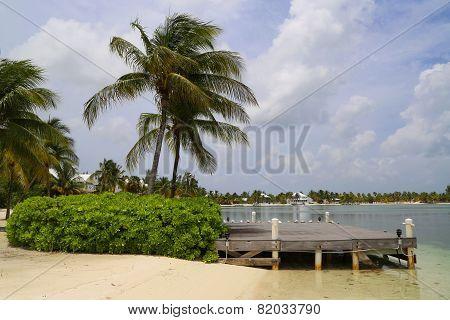 Typical landscape at Caiman Islands