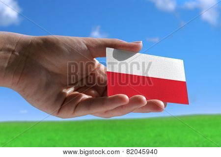 Small Polish Flag