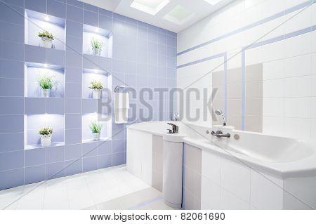 Bright Modern Bathroom With Enormous Bathtub