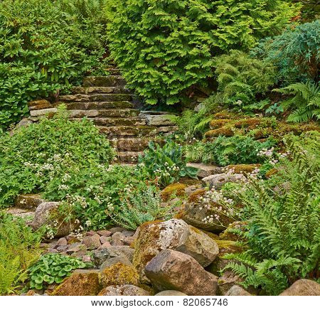 Stairs in the green overgrown garden