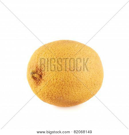 Dried old lemon fruit isolated