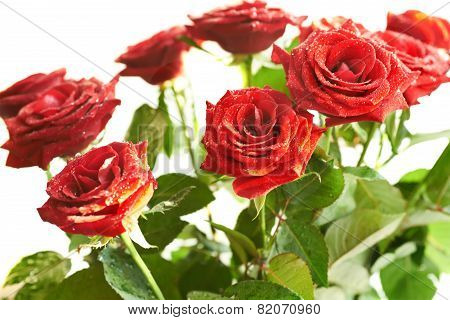Bunch Of Red Beautiful Roses
