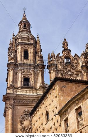 Stone Tower New Salamanca Cathedral Spain