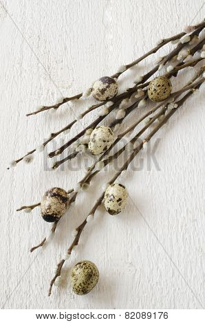 Twigs Of Willow And Quail Eggs On A White Wooden Background, Top View