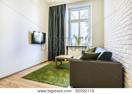 Small And Cozy Living Room