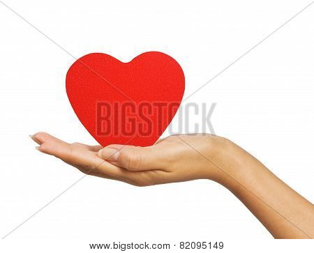 Female Hand With Heart