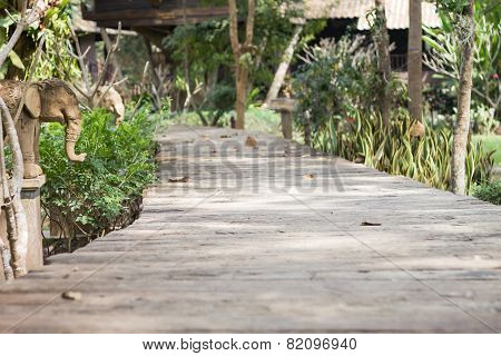 Wooden Boardwalk In The Garden