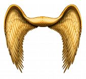 foto of cherubim  - Digital illustration of angel wings ready to be composited with other images - JPG