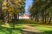 picture of manor  - Alley in the autumn in the old manor park - JPG