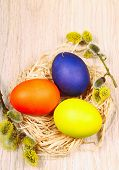 image of willow  - Easter eggs on wooden fence with branch of goat - JPG