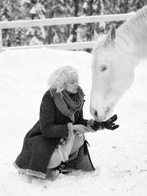stock photo of feeding horse  - Attractive blond woman feeds a white horse overcast winter day black and white image - JPG