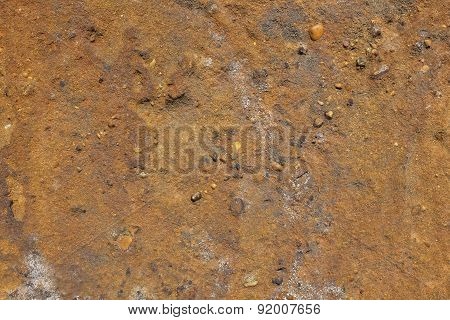 Gritty Golden Brown Sandstone