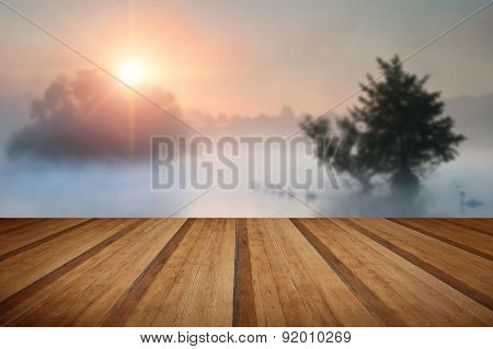 Familyof Swans Swim Across Misty Foggy Autumn Fall Lake At Sunrise With Wooden Planks Floor