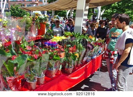 BILBAO, SPAIN, MAY 31, 2015: Flowers for sale at an outside flower market