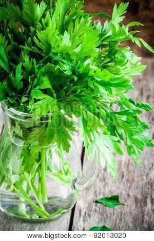 Organic Fresh Bunch Of Parsley In A Glass Jar Closeup