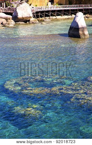 Pier  In Thailand Kho Tao Bay Abstract Of A  Water