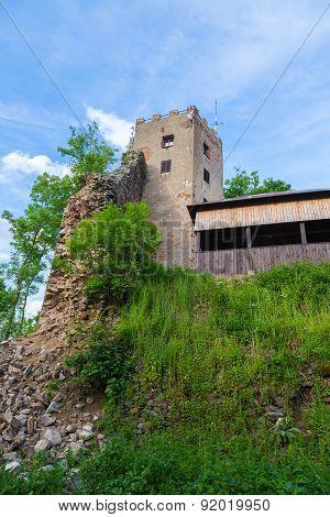 The ruins of castle Rýzmberk, Czech Republic