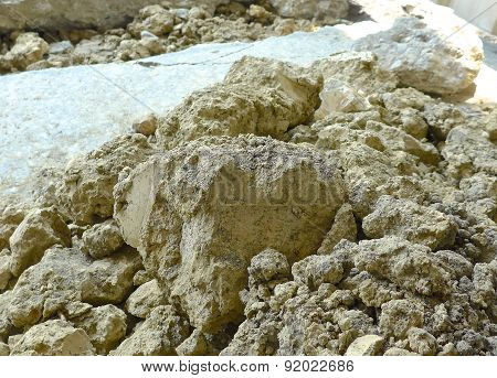 The close view of soil