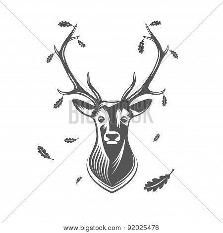 Vector Deer Head With Oak Leaves.