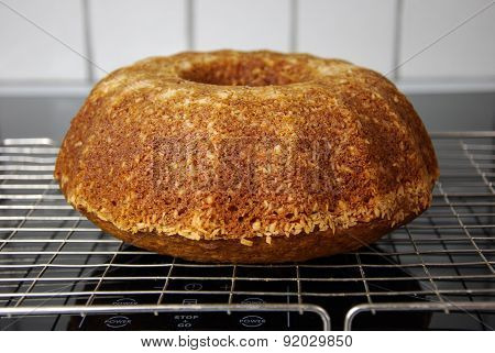 Newly Baked Delicious Cake