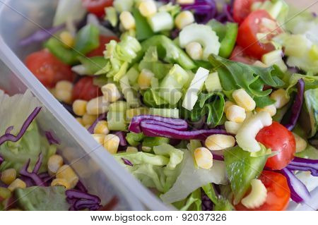Mixed healthy vegetable salad meal in lunchbox