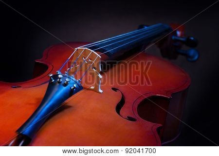 Close view of violoncello in vertical position