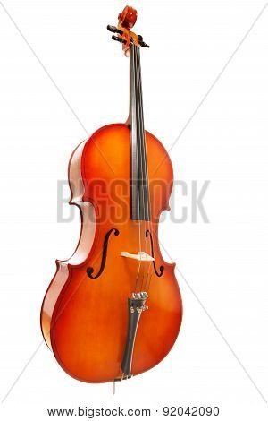 Violoncello on white background in full length