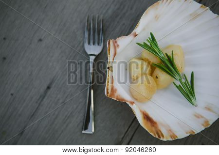 Delicious sea scallop