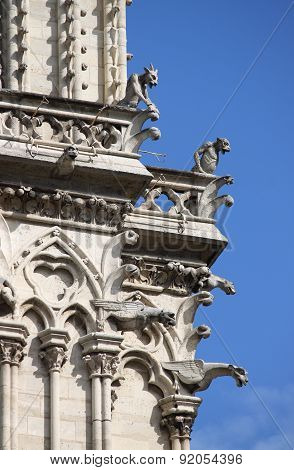 Gargoyles in Notre Dame Cathedral