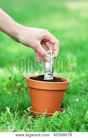 Female hand planting money into flowerpot over green grass background