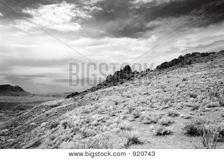 Desert Landscape In Infrared