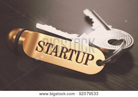 Startup - Bunch Of Keys With Text On Golden Keychain.
