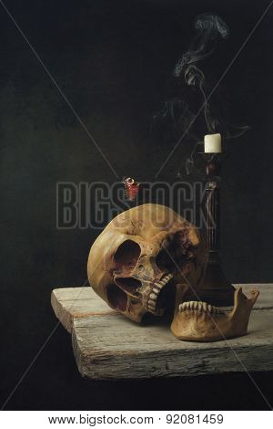 Vanitas Life, Death And Resurrection