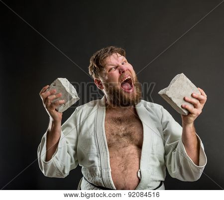 Strong karateka breaks a brick