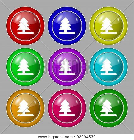 Christmas Tree Icon Sign. Symbol On Nine Round Colourful Buttons. Vector