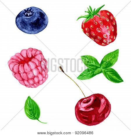 vector watercolor berries