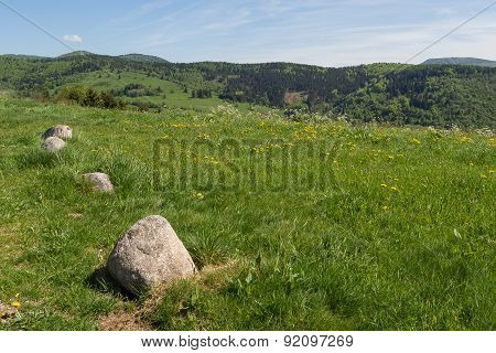 Sunny Day On The Vosges Hills