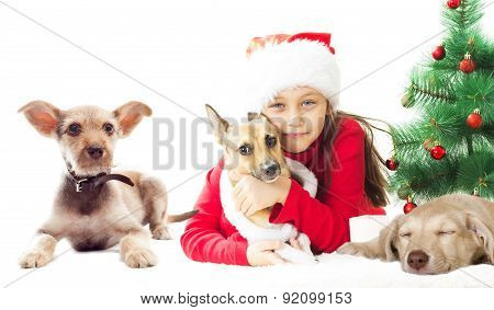 Kid In Santa Hat With  Puppy