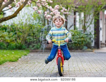 Beautiful Toddler Child Driving His First Bike Or Laufrad
